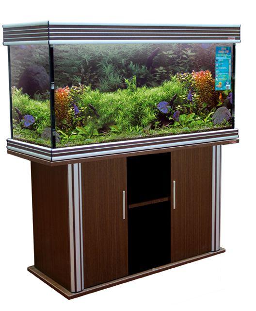 Comprare acquario online 250 litri circa for Acquario 250 litri