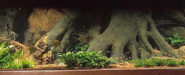 Fare sfondi 3d e rocce sintetiche for Sfondi per acquari