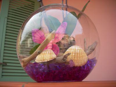 Come allestire una boccia di vetro for Boccia pesci