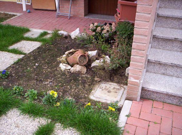 L 39 angolo verde consigli vari per giardini piante pagina 7 for Posso costruire una casa sulla mia terra