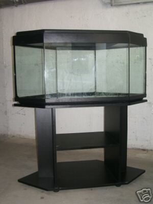 Offerta acquariologia vasca da 180 lt e mobiletto for Acquario angolare